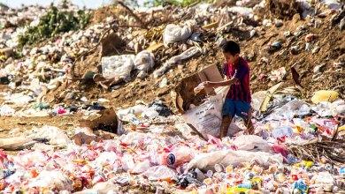 Photo of المخاطر الصحية المترافقة لمهنة نبش القمامة في الأطفال