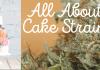 cake strains