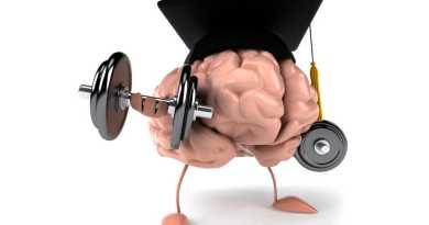 La demencia neurodegenerativa tiene como causa una mezcla de la acción e interacción de diversos factores genéticos (60 %) con factores ambientales (40 %).