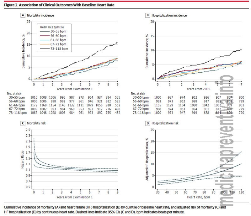 frec-cardiaca-mortalidad
