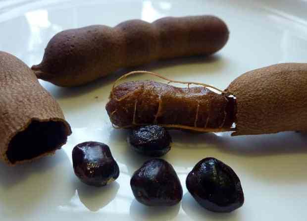 Тамаринд - состав, лечебные свойства и применение. Рецепты