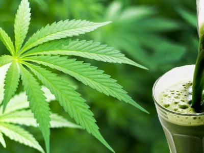 What's the Deal with Juicing Cannabis?