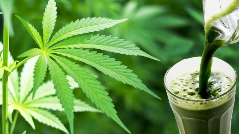 what's the deal with juicing cannabis