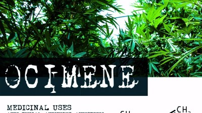 Terpene Tuesday from Medicine Box - Ocimene