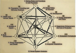 A drawing of a 3-dimensional object with numbers, lines, and labels indicating the relationships within a population among environment, needs, conditions, and adaptations.