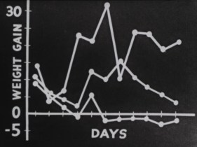 Graph of weight gain over the days.