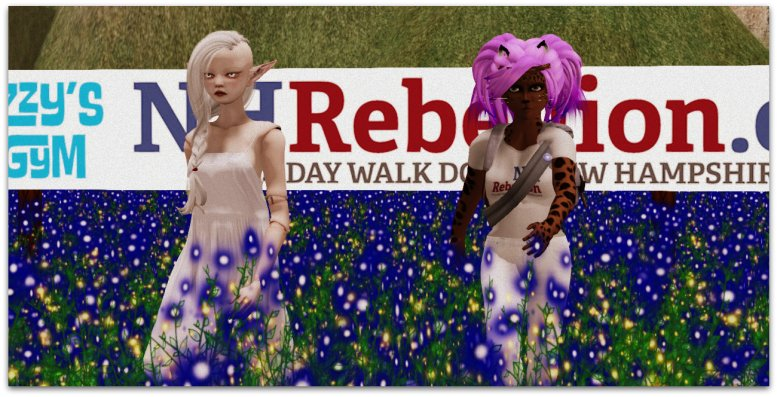 Isabella Medici and Caitlyn walking in a virtual New Hampshire Rebellion walm