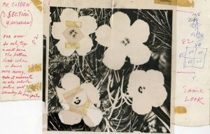 "Andy Warhol, acetate mechanical for 82-inch Flowers, 1964,  Ink / acetate / Bristol board, overall 10"" x 14"" photo courtesy The Andy Warhol Museum"