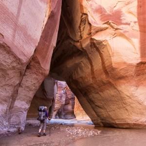 image of a hiker set against massive cliffs