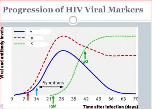 Human immunodeficiency virus hiv archives - Test hiv p24 periodo finestra ...