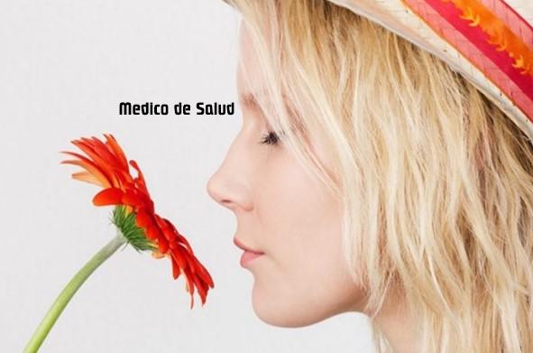 Comprender el sentido del olfato olor metálico en la nariz: posibles causas Olor metálico en la nariz: posibles causas Screenshot 22 38