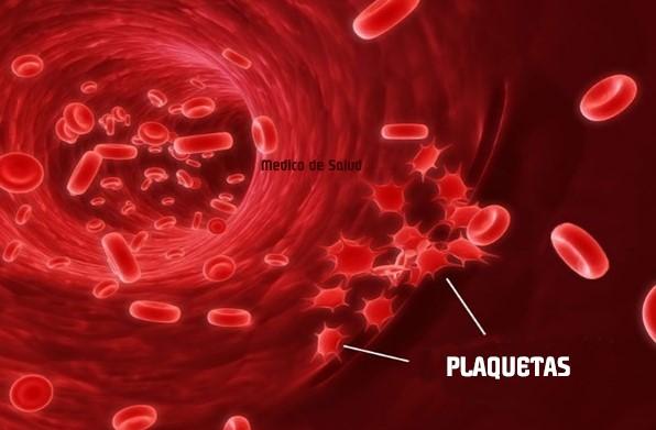 La prueba de sangre del MPV explicada la prueba de sangre del mpv explicada La prueba de sangre del MPV explicada Screenshot 24 13