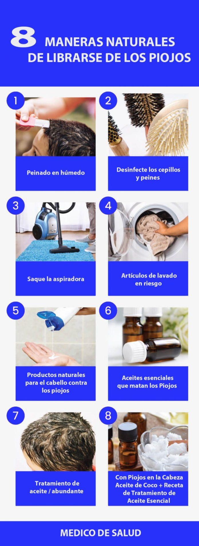 Cómo deshacerse de los piojos: 8 remedios naturales piojos Cómo deshacerse de los piojos: 8 remedios naturales C  mo deshacerse de los piojos 8 remedios naturales 2