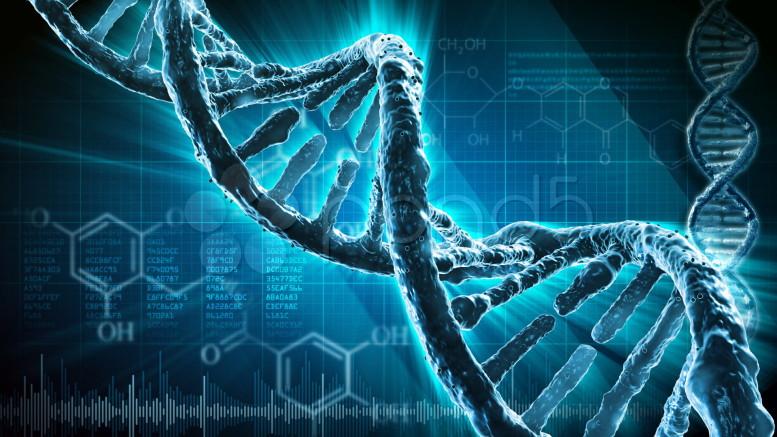 Un poco de ciencia y un mucho de esperanza en la lucha contra el cáncer