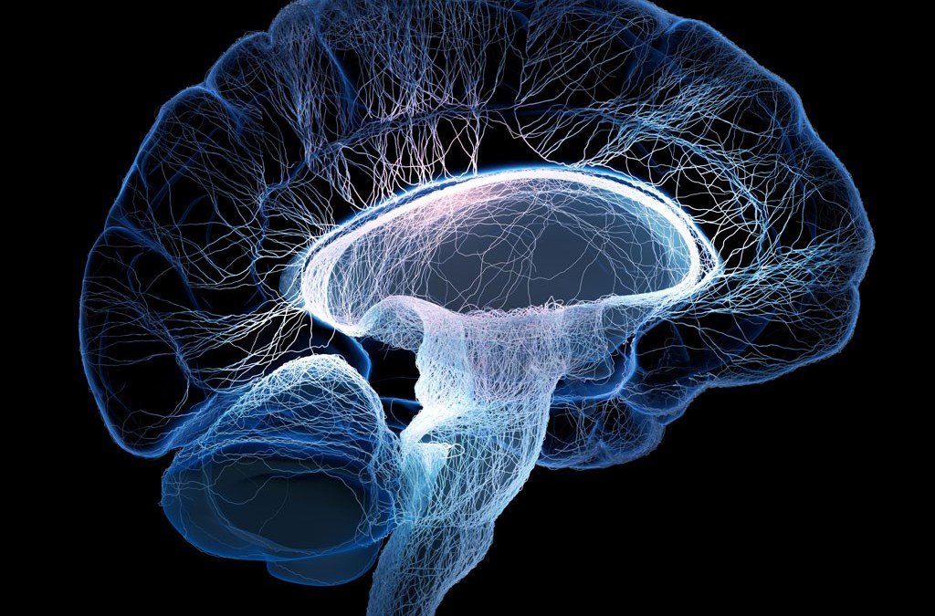 Enfermedades y trastornos neurológicos más frecuentes