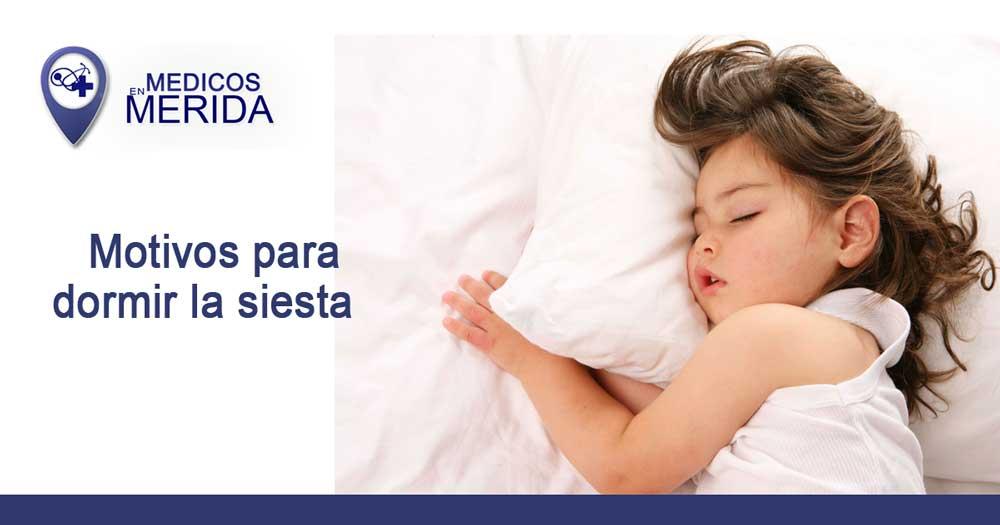 Motivos (científicos) para dormir la siesta