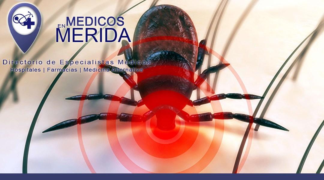 Enfermedades raras que pueden dar en Yucatán