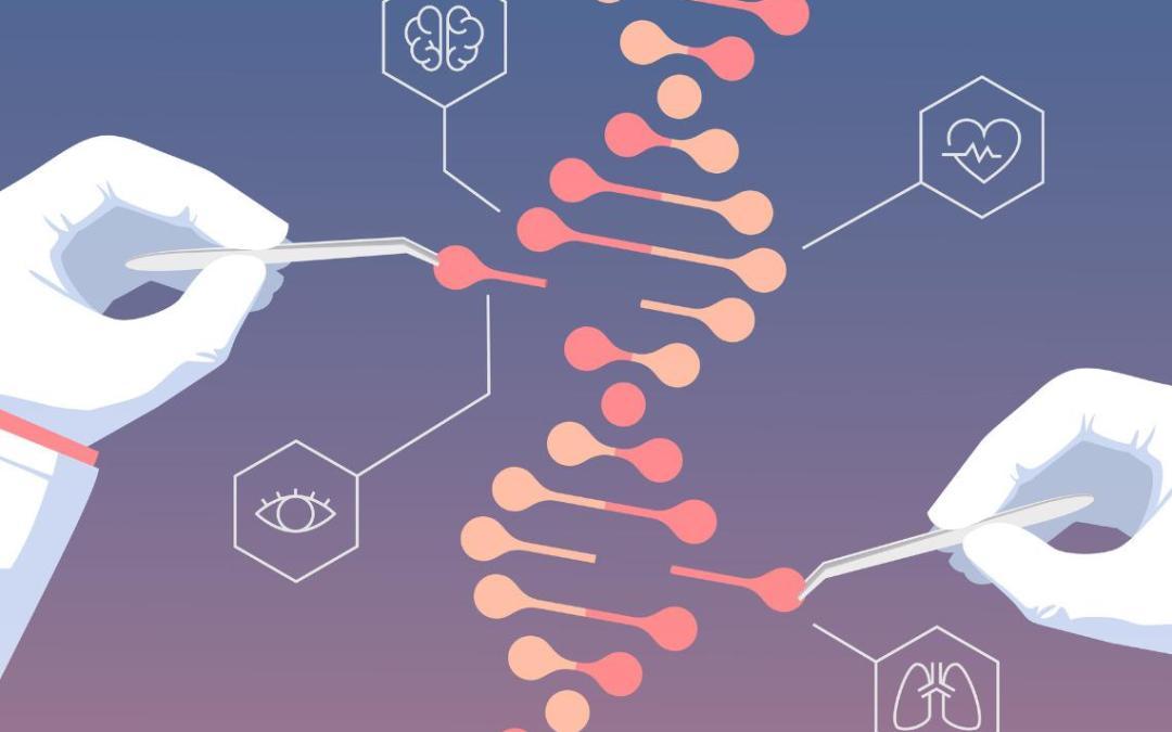 ¿Cómo ayuda el genetista?