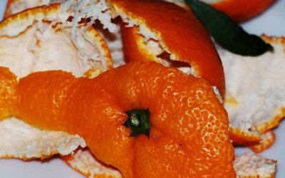 Descubra o benefícios de partes de alimentos que descartamos todos os dias