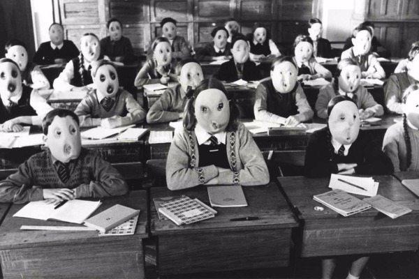 A escola e a indústria do charlatanismo