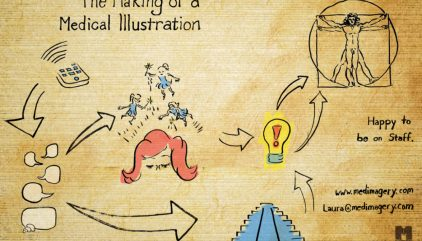 What is a Medical Illustrator? About the Career of Medical