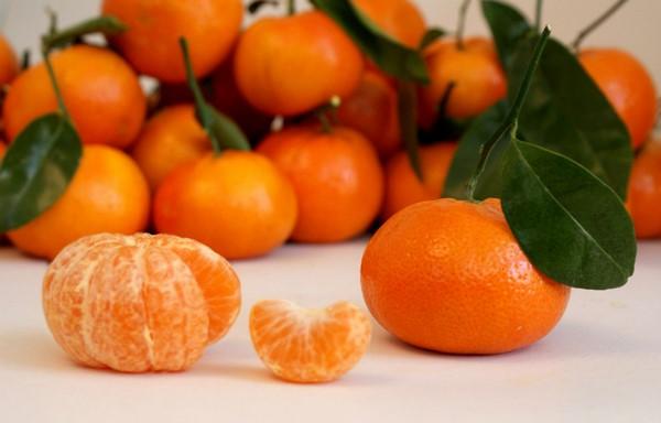 Cómo plantar mandarinas. Ficha completa c