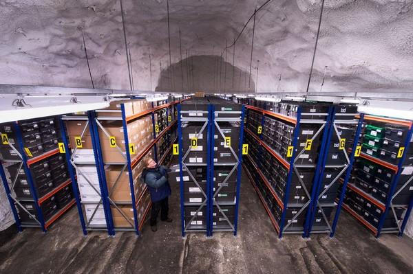 Svalbard Global Seed Vault e