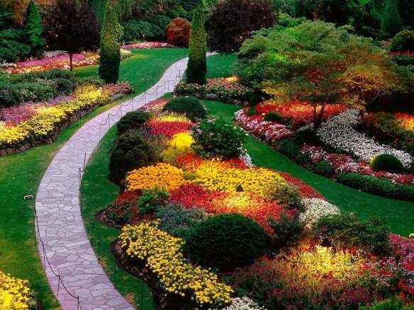 Fondos de pantalla de jardinería aa
