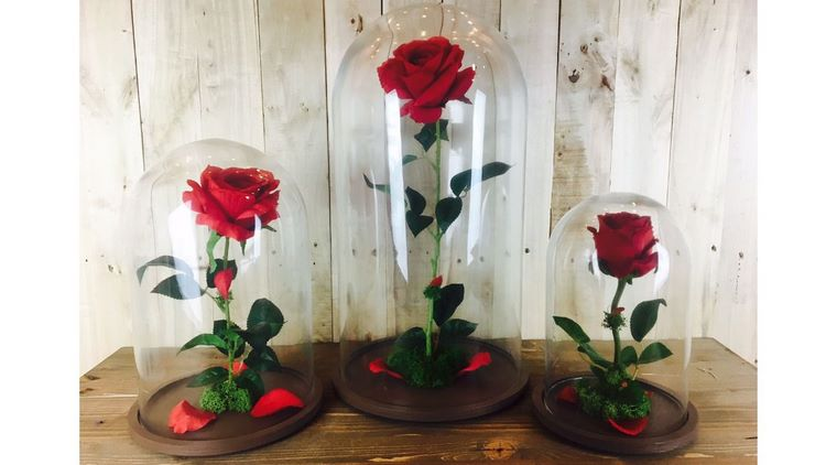 Cómo fabricar flores liofilizadas