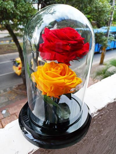 Cómo se crean las rosas eternas