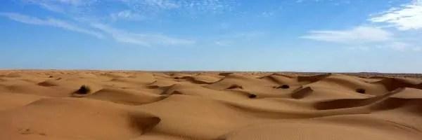 destacado-amigos-del-desierto