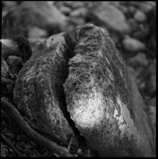 The Secret Life of a Rock, Hasselblad 500cm Ilford sfx 200 Thomas Hooper 2020