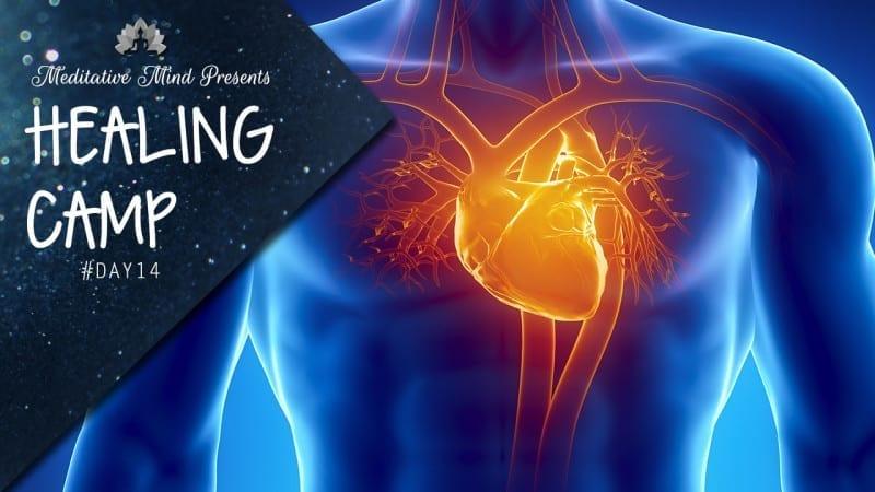 Heart Healing Day