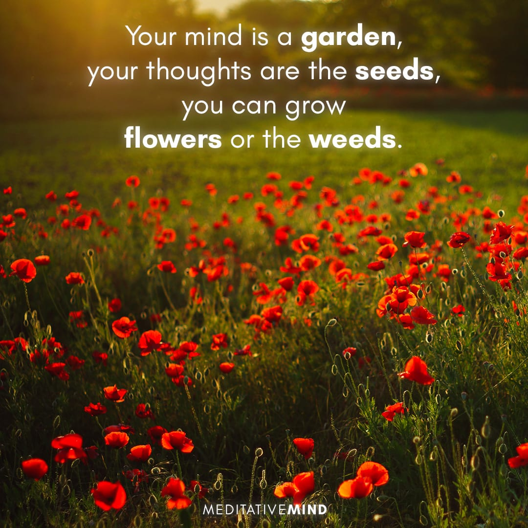 Your mind is a garden, your thoughts are the seeds, you can grow flowers or the weeds.