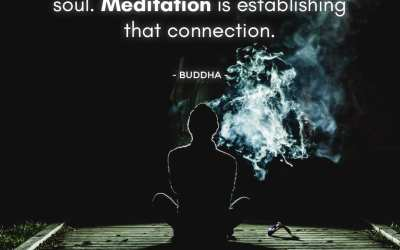 Suffering is due to our disconnection with the inner soul. Meditation is establishing that connection.