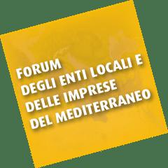 Mediterranean Forum