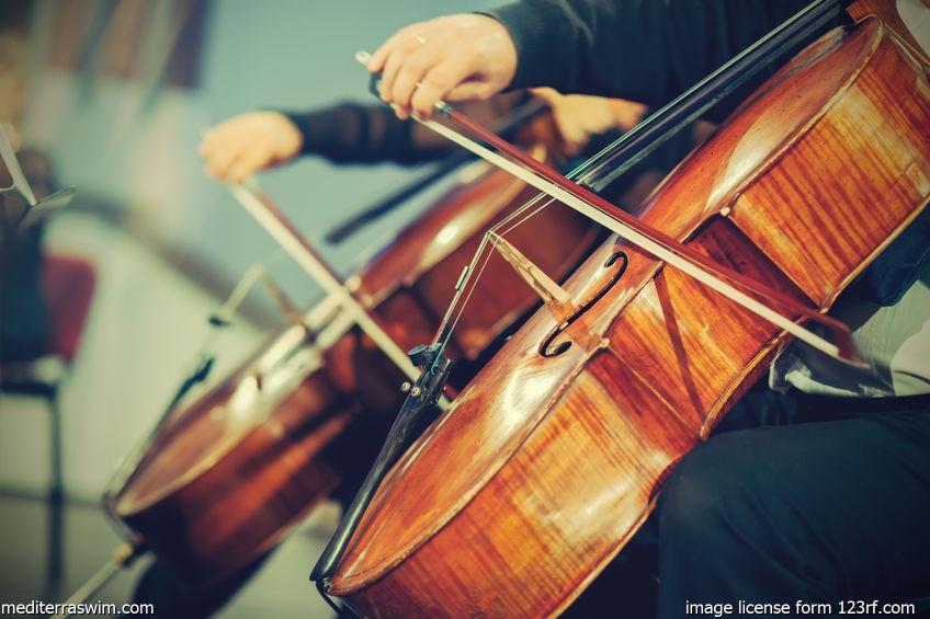 Cello Muscian