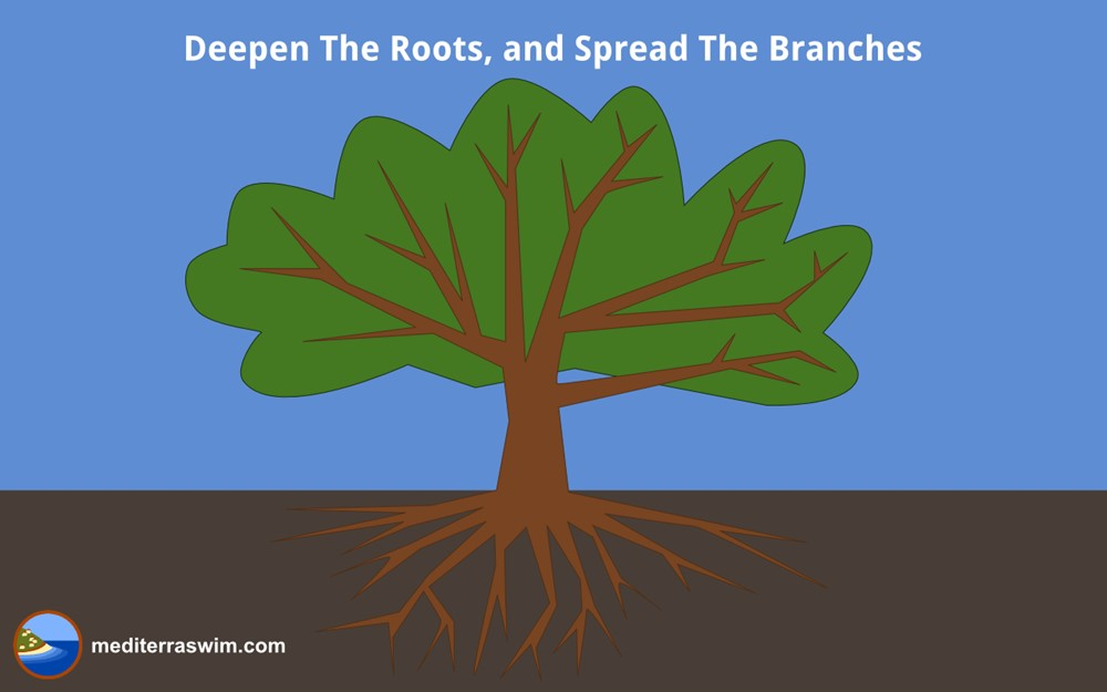 1405 roots and branches 1000x JPG