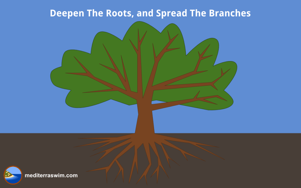 1405 roots and branches