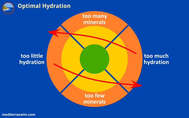1508 hydration