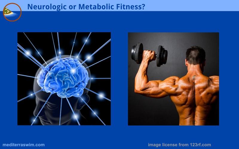 1512 neurologic metabolic 800x500