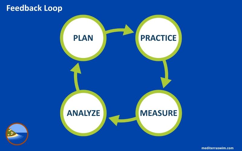 feedback-loop-800x500