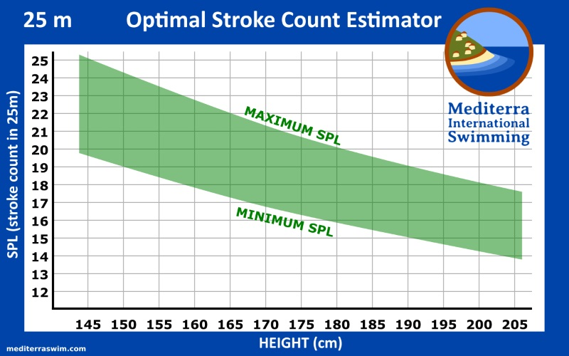 Chart of strokes per 25m pool length vs height