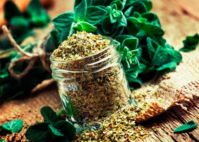 Маркетинговые исследования ассортимента препаратов из лекарственного растительного сырья, обладающие противовоспалительным, антимикробным действием