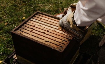 pčelarski pribor