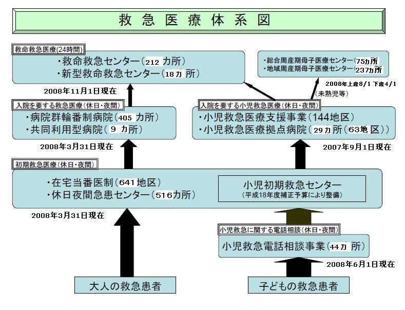 日本の救急医療体制(重症度に応じた医療機関の整備)