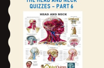 The Head and Neck Quizzes – Part 6