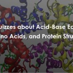 The Quizzes about Acid-Base Equilibria, Amino Acids, and Protein Structure