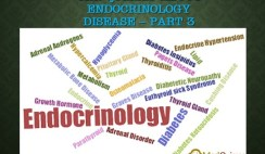 The Quizzes about Endocrinology disease – Part 3