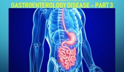 The Quizzes about Gastroenterology disease – Part 3